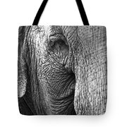 Remembered Lucy  Tote Bag