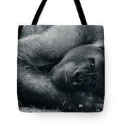 Remembering Fay Wray Tote Bag