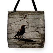 Remembering Hitch Tote Bag