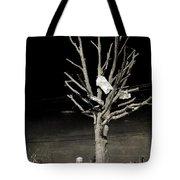 Remembering Joplin Tote Bag