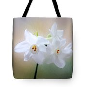 Remembering You Tote Bag