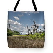 Remleys Point Bridge View Tote Bag