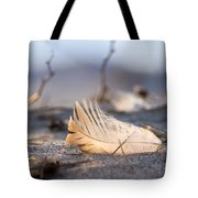 Remnants Of Icarus Tote Bag