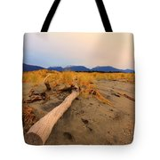 Remote New Zealand Beach Tote Bag