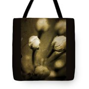 Renewal Of Life Tote Bag