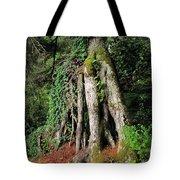 Replenishing The Earth II Tote Bag