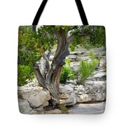 Resilient Tree Tote Bag