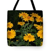 Resplendent Yellows Tote Bag