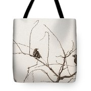 Rest Area IIi Tote Bag