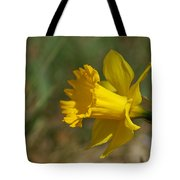 Rest In Peace Sherry Holder Hunt Tote Bag