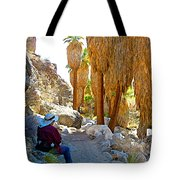 Rest Stop In Andreas Canyon Trail In Indian Canyons-ca Tote Bag