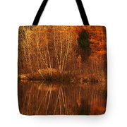 Restes D'automne Tote Bag by Aimelle