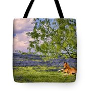 Resting Among The Bluebonnets Tote Bag