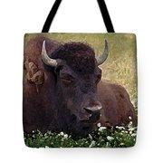 Resting Bison Tote Bag