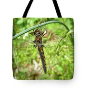 Resting Brown Dragonfly Tote Bag