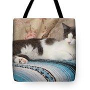 Resting Cat Tote Bag