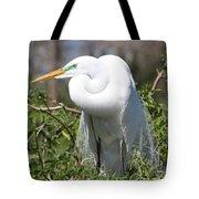 Resting Great Egret Tote Bag