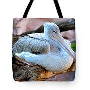 Resting Great White Pelican Tote Bag