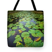 Resting Lilly Pads Tote Bag
