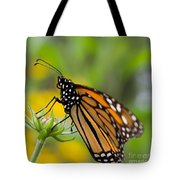 Resting Monarch Butterfly Tote Bag
