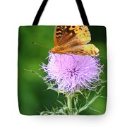 Resting On A Thistle Tote Bag