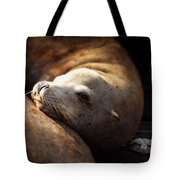 Resting On The Pier Tote Bag