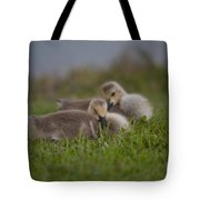 Resting Our Eyes Tote Bag