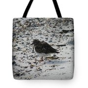 Resting Ruddy Tote Bag