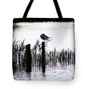 Resting Seagull  Tote Bag