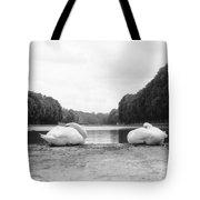 Resting Swans Tote Bag