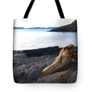 Resting Traveller Tote Bag