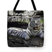Resting Two Tote Bag