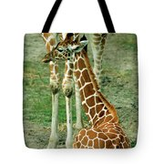 Reticulated Giraffe And Calf Tote Bag