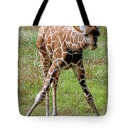 Reticulated Giraffe Tote Bag