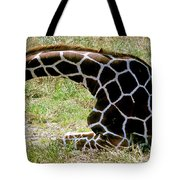 Reticulated Giraffe On Ground Tote Bag
