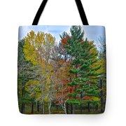 Retreating Pines Tote Bag