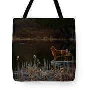Retriever Focus Tote Bag