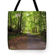 Wooded Path 12 Tote Bag