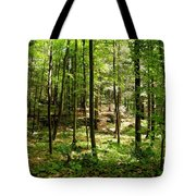 Wooded Path 13 Tote Bag