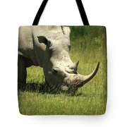 Rhino Covered In Flies Tote Bag