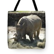 Rhino Eating Tote Bag