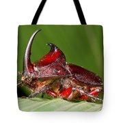 Rhinoceros Beetle Tote Bag