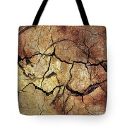 Rhinoceros From Chauve Cave Tote Bag