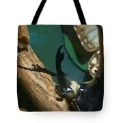 Rhinoseros Beetle Up Close And Personal Tote Bag