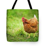 Rhode Island Red Chicken Tote Bag