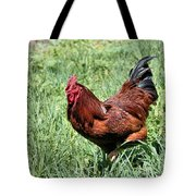 Rhode Island Red Tote Bag