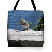 Rhode Island Squirrel Tote Bag