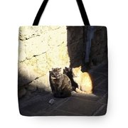 Rhodes Cat Trio Tote Bag