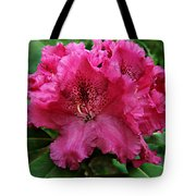 Rhododendron ' Bessie Howells ' Tote Bag