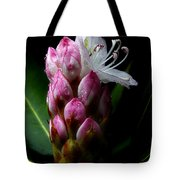 Rhododendron Begining Tote Bag